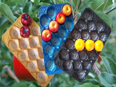 تولید شانه میوه وکیوم