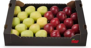 پوشال کاغذی برای میوه