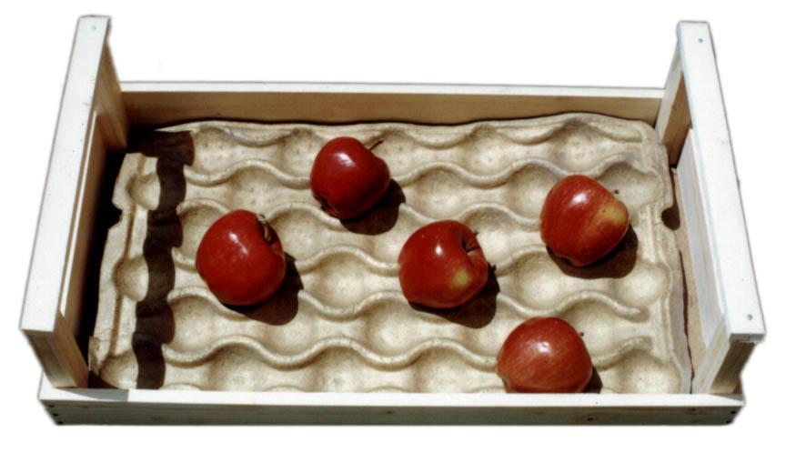 عرضه کننده شانه میوه سلولزی